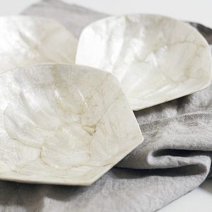 shell dishes